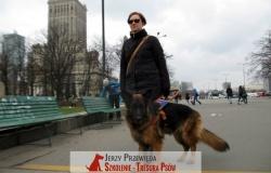pies_przewodnik_05