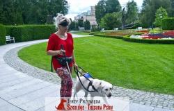 pies_przewodnik_08
