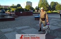 pies_przewodnik_11